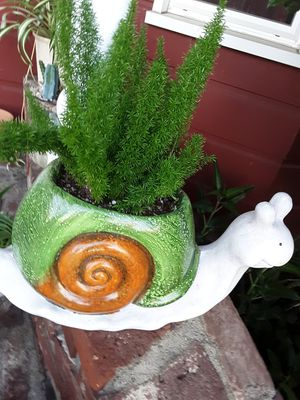 "13"" pot with plant this week only $12 for Sale in Whittier, CA"