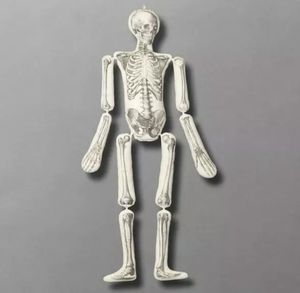 """John Derian Skeleton Long Lost Friend Body Pillow 63"""" Threshold Target Exclusive for Sale in Houston, TX"""