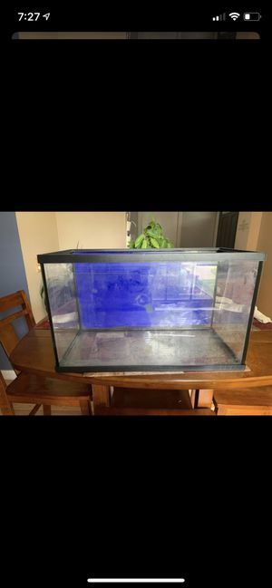 10 gal for Sale in Parma, OH