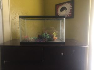 Table, hoverboard, 2 shelves, aquarium for Sale in Peoria, IL