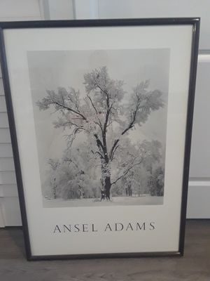 Ansel Adams snowstorms print 1948..prfect condition..nice frame 27x37 inches for Sale in Oakland Park, FL