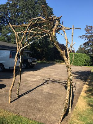 Wedding arbor made of branches for Sale in Oregon City, OR