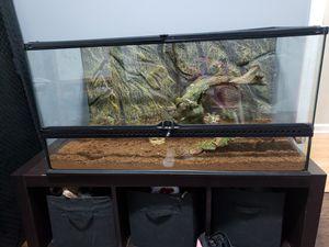 Reptile cage/ habitat for Sale in Brandon, FL