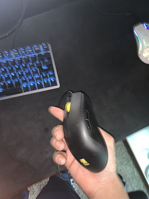 Mouse for Sale in Fresno, CA