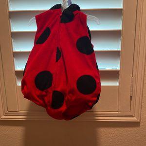 Ladybug for Sale in Baldwin Park, CA