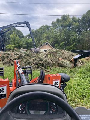 Tree work for Sale in Trinity, FL