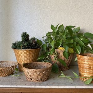 Plant holder for Sale in Ontario, CA