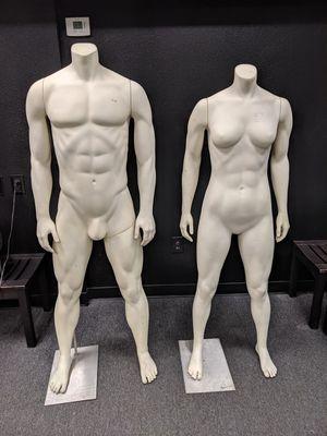 Display mannequins for Sale in Phoenix, AZ