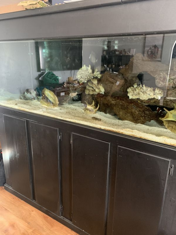300 gallon Size glass fish tank.