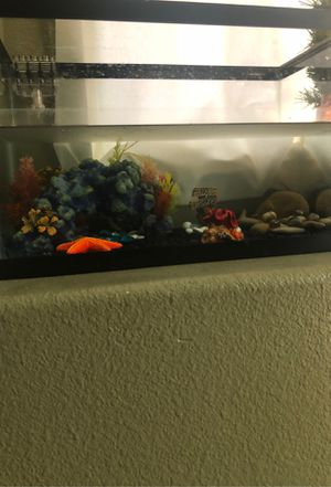 Fish tank. Small for Sale in Temecula, CA