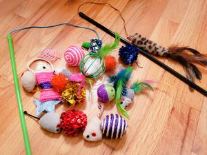 Lot of cat toys! for Sale in Bellevue, WA