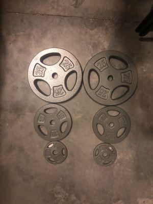 (Weight sets) 1 set of 25,1 set of 10, 1 set of2.5 for Sale in Brandon, FL