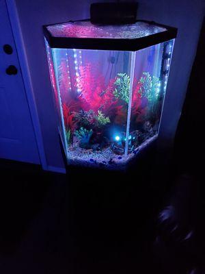 30 Gallon Hexagon Fish Tank for Sale in Wichita, KS