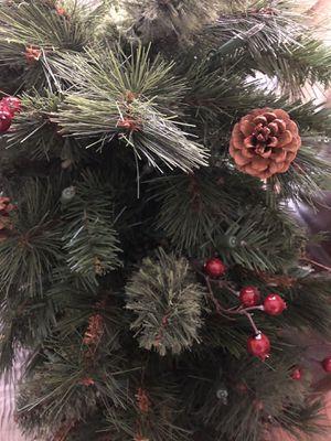Christmas Tree for Sale in Leesburg, VA