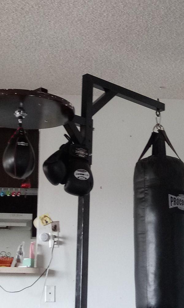 Procombat punching/speed bag