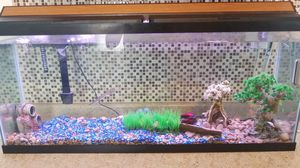55 gallon fish tank for Sale in Columbus, OH