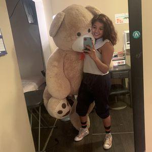 Big Teddy Bear for Sale in Houston, TX