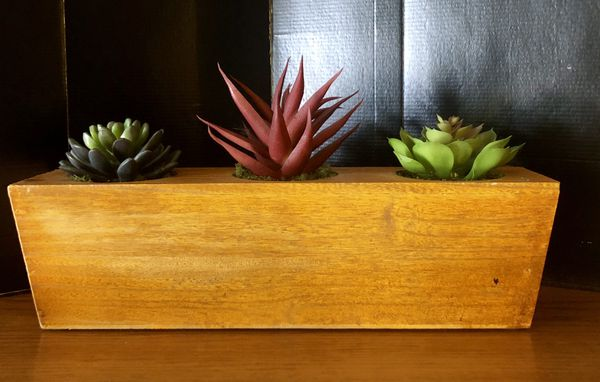 """Wooden box of succulents (fake) 14"""" x 3"""""""