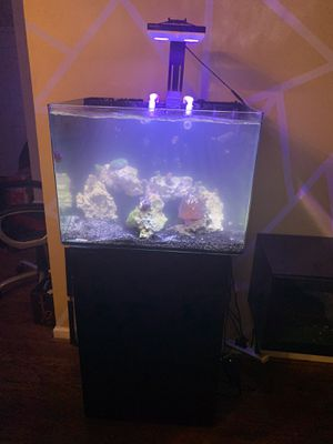 Fish tank for Sale in Stockbridge, GA