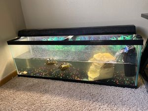 50 gallon fish tank for Sale in Holland, OH