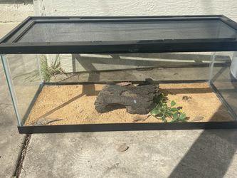 20 Gallon Reptile Tank for Sale in Stockton,  CA