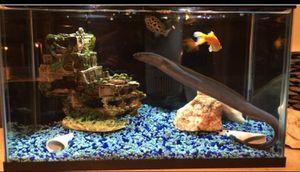 10 Gallon Aquarium Set for Sale in San Diego, CA