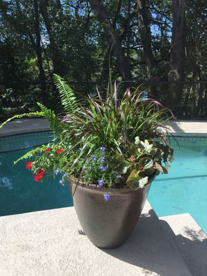Flower arrangements, pots, flowers, flower containers for Sale in Orlando, FL