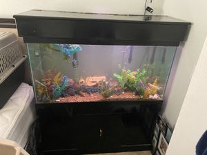 90 Gallon Fish Tank Fully loaded with Stand for Sale in Las Vegas, NV