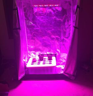 Grow tent with lights and accessories for sale for Sale in East Riverdale, MD