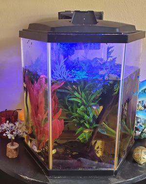 8 gallon glow fish tank for Sale in Port Richey, FL