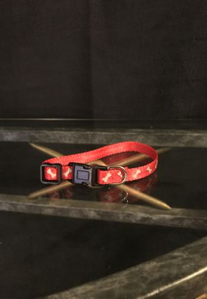 Small dog collar for Sale in Wyoming, OH