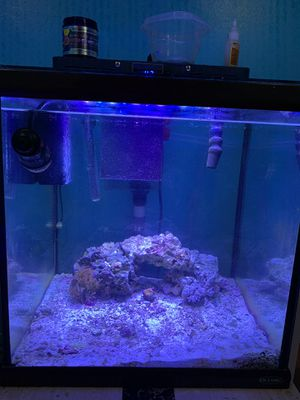 Saltwater tank for Sale in Silver Spring, MD