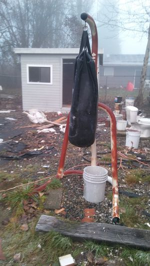 Hanging punching bag w/ stand. for Sale in Seattle, WA