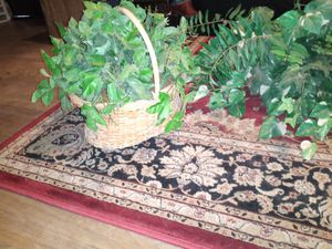 Artificial plants for Sale in Fort Worth, TX