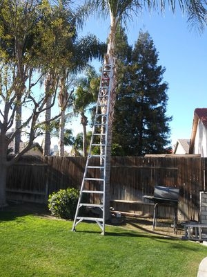 Ladder asking 100 for Sale in Bakersfield, CA