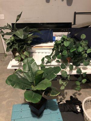 Three artificial plants for Sale in Canton, MI