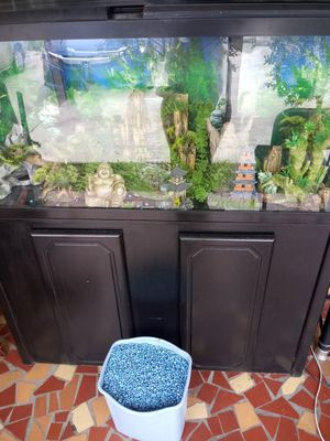 $250 Fish Tank with all extras for Sale in Tampa, FL