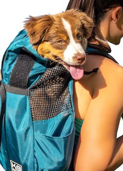 Dog Backpack (XS) for Sale in Gainesville,  FL