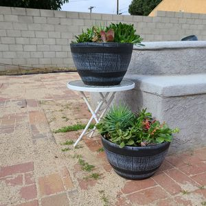 Selling two Hard Plastic Pots Filled With Succulents.. I Just Don't Have Room For Them.. $25 Each for Sale in Gardena, CA