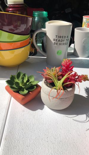Fake succulents for Sale in San Diego, CA