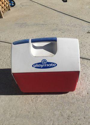 Playmate cooler for Sale in Lake Elsinore, CA