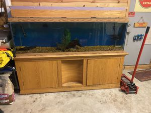 125 gallon aquarium for Sale in Homer Glen, IL