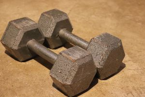 20lb weights for Sale in Valley Grove, WV