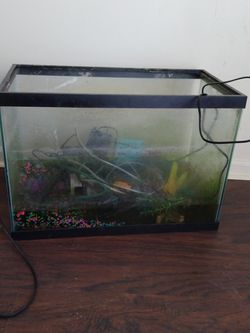 Excellent Condition Fish Tank With Feeder And Etc for Sale in Detroit,  MI