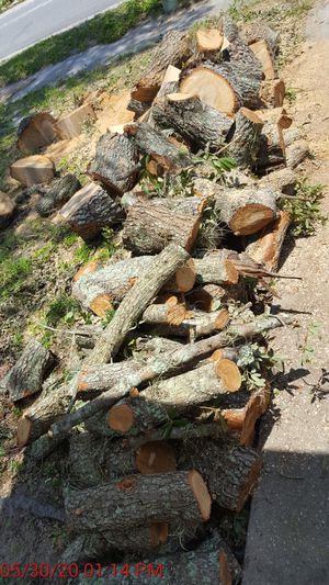 FREE FIREWOOD for Sale in Riverview, FL