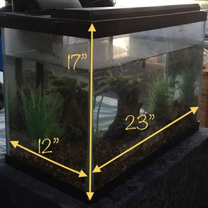 20 gallon Fish Tank With Water Filter and Some Tank Decorations for Sale in Pacifica, CA