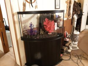 54 gallon fish tank for Sale in Ghent, KY