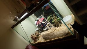 200 gal aquarium with 2 year old boa constrictor extremely friendly for Sale in Murfreesboro, TN