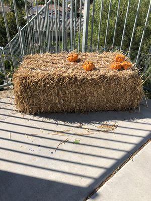 5 hay straw bales for Sale in El Cajon, CA