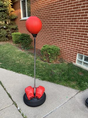 Punching Bag for Sale in Garden City, MI